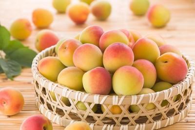 Tổng hợp những loại hoa quả tốt cho mắt